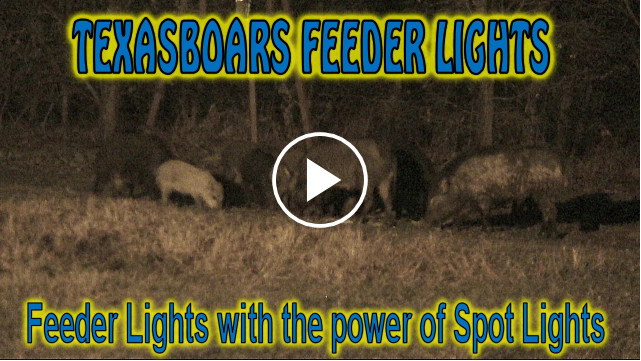 Hog Hunting Video using TEXASBOARS Feeder Lights