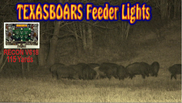 hog hunting with a TexasBoars Feeder Light