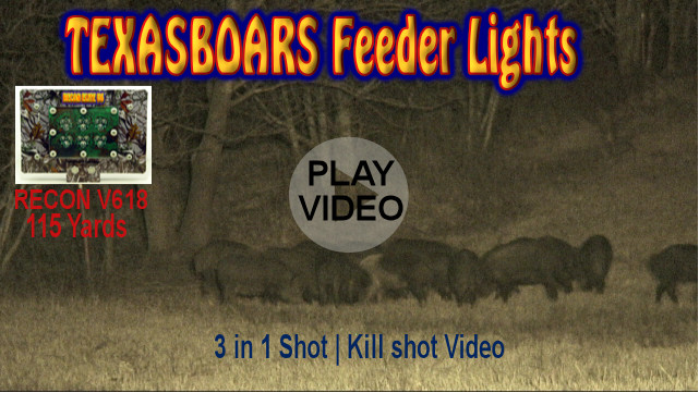 Hog hunting feeder light with power of spot lights
