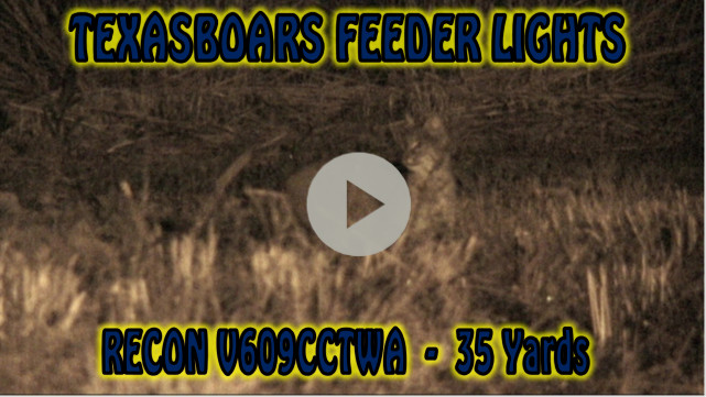 video using a feeder light for hunting hogs