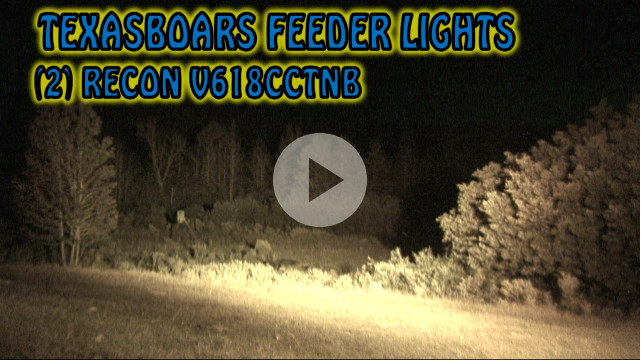 hog hunting video with a Red Green Feeder Light